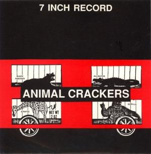 7 Inch Record