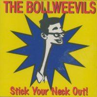 bollweevils-stick your neck out