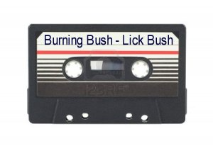 Burning Bush Lick