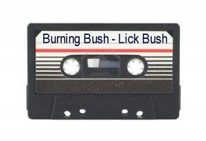 Lick Bush